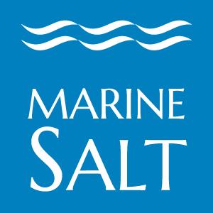logo-MS